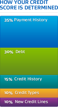 Image: elements of credit score