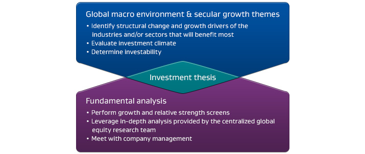 Global macro enviroment & secular growth themes