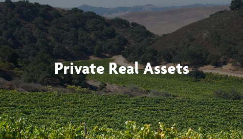 Private real asset
